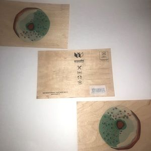 2/$20 🛍️ Set of 3 Woodhi Donut Post Cards